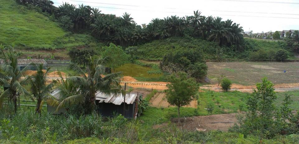 Cherakah Farm